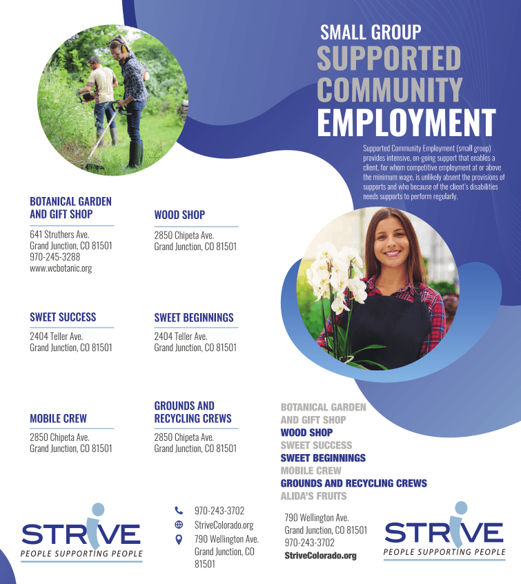 Small Group Supported Employment